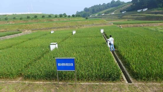 桃园农业生态实验站(代表区域:江南丘陵复合农业生态系统)